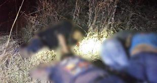 Buscaban familiares a 2 de los ejecutados en Nopala