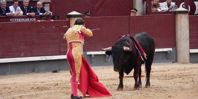 """Tizayuca estaría a la altura de los """"más civilizados"""" si concretara la cancelación de permisos para espectáculos públicos en los que participan animales."""