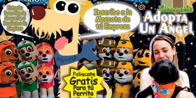 carrera de botargas como parte de un evento que busca promover la adopción de perros en la ciudad de Pachuca.