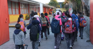 SEP/alumnos/violencia/libros de texto