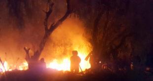 incendios en tula